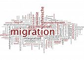 Word cloud - migration