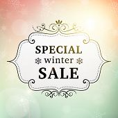 pic of blue-bell  - winter special sale offer vintage poster vector background - JPG