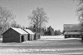 Old barn and sheds in black and white