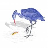 Heron Hunting Fish Vector Illustration
