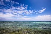 pic of cebu  - Beautiful tropical beach in Oslob - JPG