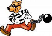 Convict dog