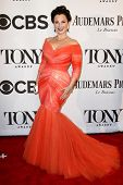 NEW YORK-JUNE 8: Actress Fran Drescher attends American Theatre Wing's 68th Annual Tony Awards at Ra