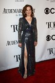 NEW YORK-JUNE 8: Actress Karen Ziemba attends American Theatre Wing's 68th Annual Tony Awards at Rad