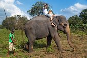 SIGIRIYA, SRI LANKA - 28 FEBRUARY, 2014: Man and child riding on the back of elephant and mahout sta