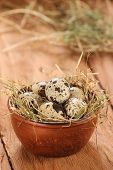 Quail Eggs In A Clay Bowl With Hay