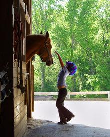 stock photo of horse girl  - Girl Petting Horse - JPG
