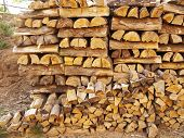Piled Firewood, Wood Texture Close Up