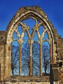 Elgin Cathedral, Window