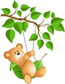 Teddy bear swinging from a tree
