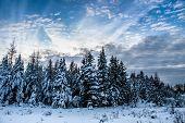 Cloudscape And Winter Scene