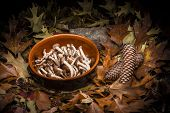 Autumnal still life composition: clay pot and walnuts