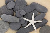 Starfish sea shell and pebbles on a sand beach.
