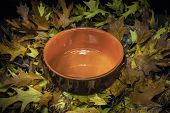 Autumnal Still Life Composition: Clay Pot And Colored Leaves
