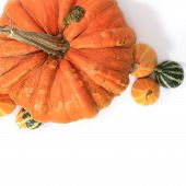 Pumkins Wallpaper isolated pattern