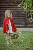 picture of little red riding hood  - Cute little girl in red cape with basket playing red riding hood in summer garden - JPG