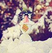 small snowman in snow with a hipster tie and glasses on toned with a retro vintage instagram filter
