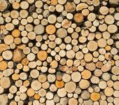 Woodpile with round firewood