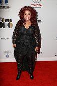 LOS ANGELES - NOV 19:  Chaka Khan at the Ebony Power 100 Gala at the Avalon on November 19, 2014 in Los Angeles, CA
