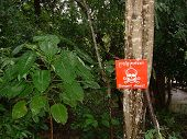 stock photo of landmines  - A red warning - JPG