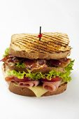 picture of sandwich  - ham and bacon club sandwich on a white background - JPG