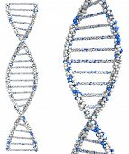 image of double helix  - Two helix close up molecules Dna - JPG