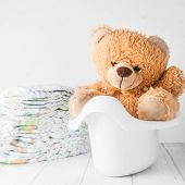 pic of diaper  - A teddy bear in a white potty next to stack of diapers - JPG