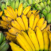 picture of bunch bananas  - Bunches of ripe bananas on the market - JPG