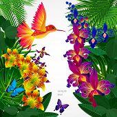 pic of tropical birds  - Floral design background - JPG