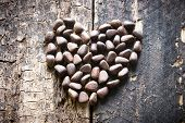 pic of pine nut  - the heart of the pine nuts on a wooden table - JPG