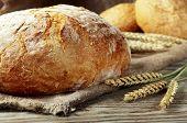 Постер, плакат: Loaf Bread