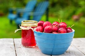 pic of jar jelly  - Fresh crabapples with jars of crabapple jelly - JPG