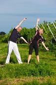 Mature or senior couple in jogging gear doing sport and physical exercise outdoors in a vineyard, st