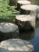 Stepping Stones Close-Up