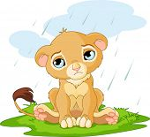 A cute character of sad lion cub on rainy day