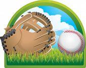 baseball in backyard