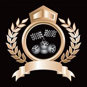 racing checkered flags and tires on royal crest