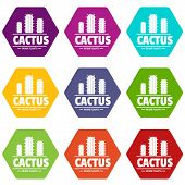 Botany Cactus Icons 9 Set Coloful Isolated On White For Web poster