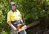 stock photo of arborist  - Arborist with chain saw reading for work on tree - JPG