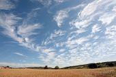 Wheatfield and a beautiful cloudshape in Portugal