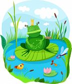 stock photo of amphibious  - vector illustration of a cute frog  - JPG