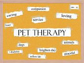 stock photo of pegboard  - Pet Therapy Corkboard Word Concept with great terms such as caring service dog cat and more - JPG