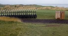 foto of fescue  - Pull carts lined up on a golf course in Canada - JPG