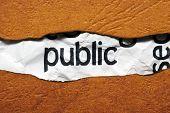 Conceito de público