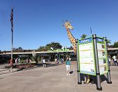 A Woman Studies The San Diego Zoo Sign