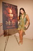Natasha Blasick photo shoot to promote the DVD release of