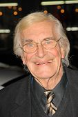 Martin Landau at the AFI Fest Gala Screening of