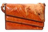 image of alligator baby  - Front side of alligator purse with baby alligator worked into the leather as decoration - JPG