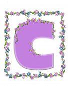 Alphabet Daisy Fair Lilac C