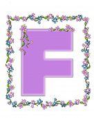 Alphabet Daisy Fair Lilac F